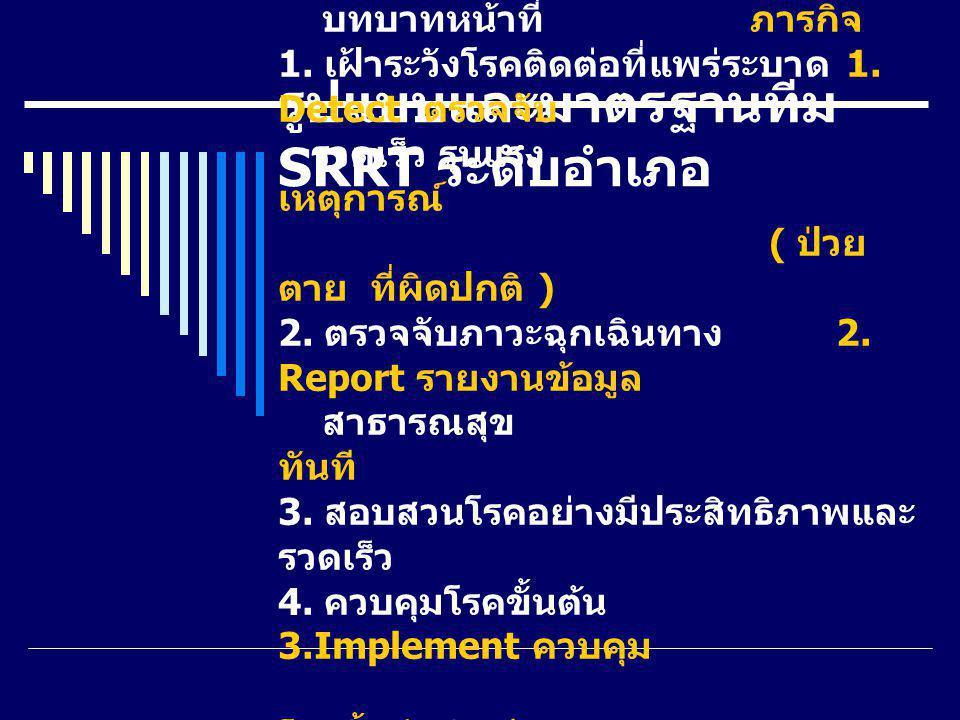 รูปแบบและมาตรฐานทีม SRRT ระดับอำเภอ