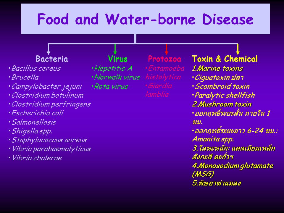 Food and Water-borne Disease