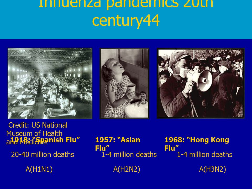 Influenza pandemics 20th century44