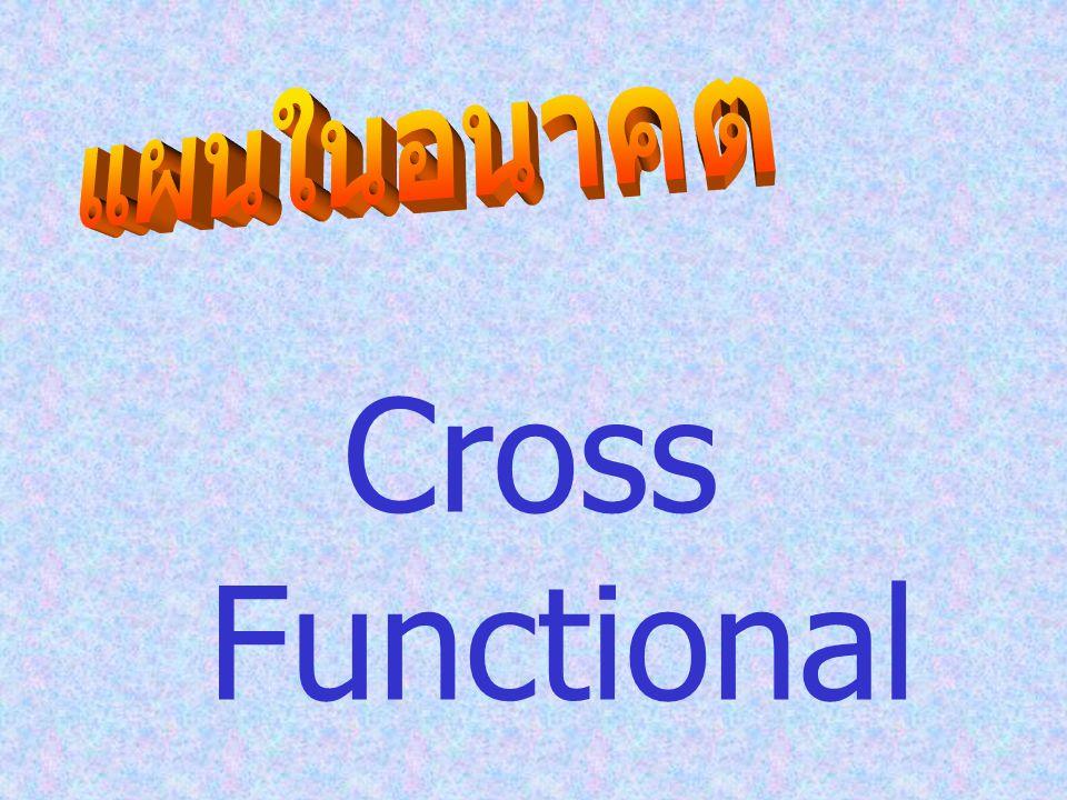 แผนในอนาคต Cross Functional