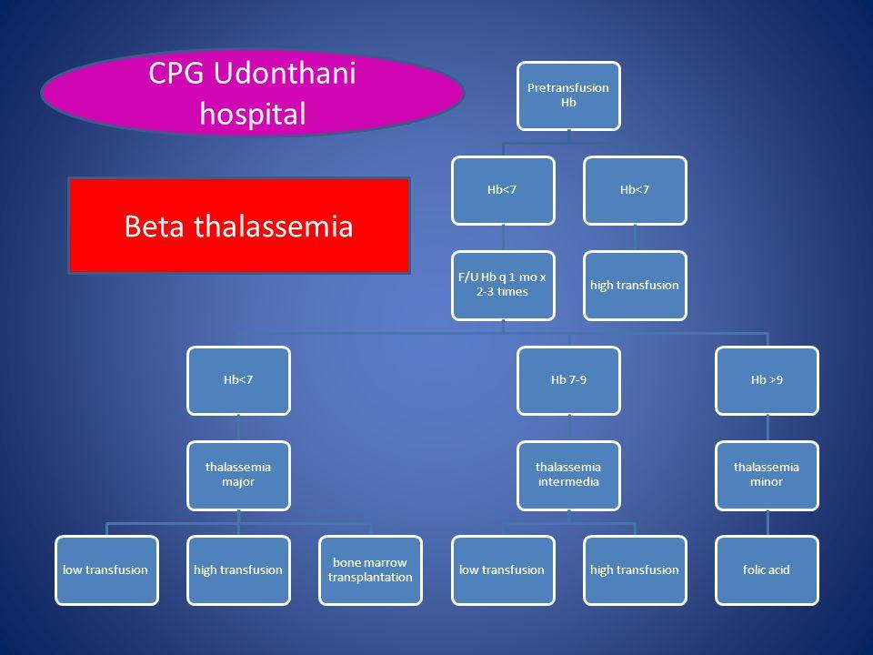 CPG Udonthani hospital