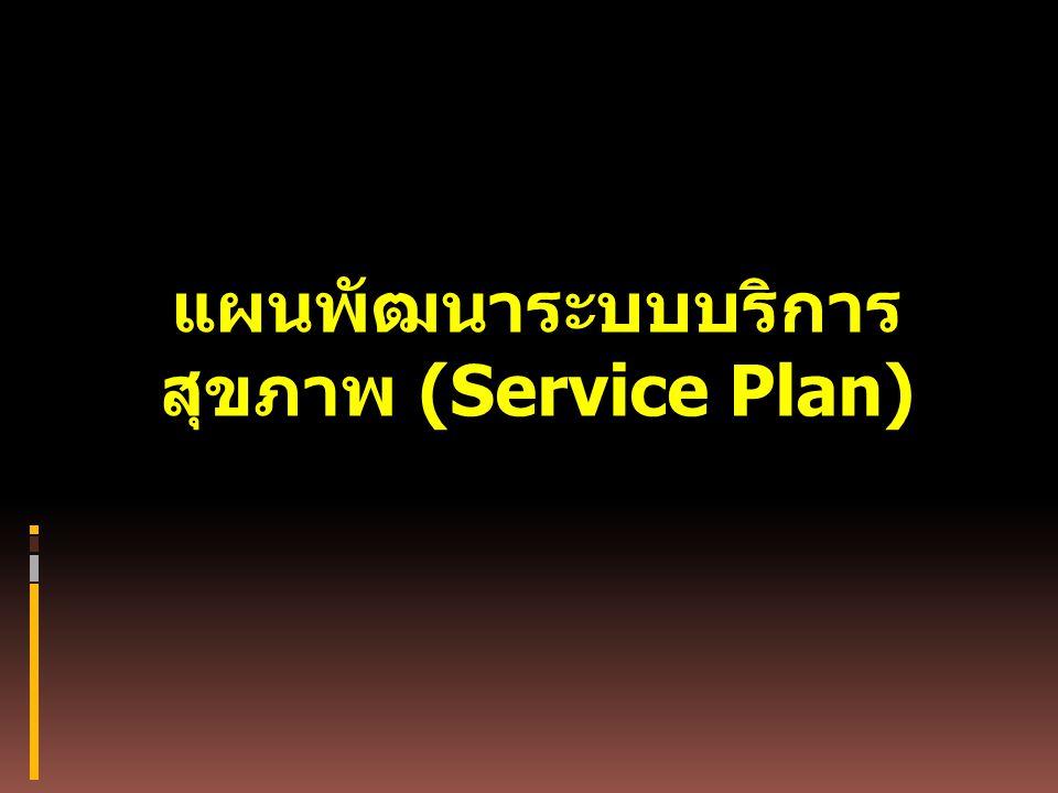 แผนพัฒนาระบบบริการสุขภาพ (Service Plan)