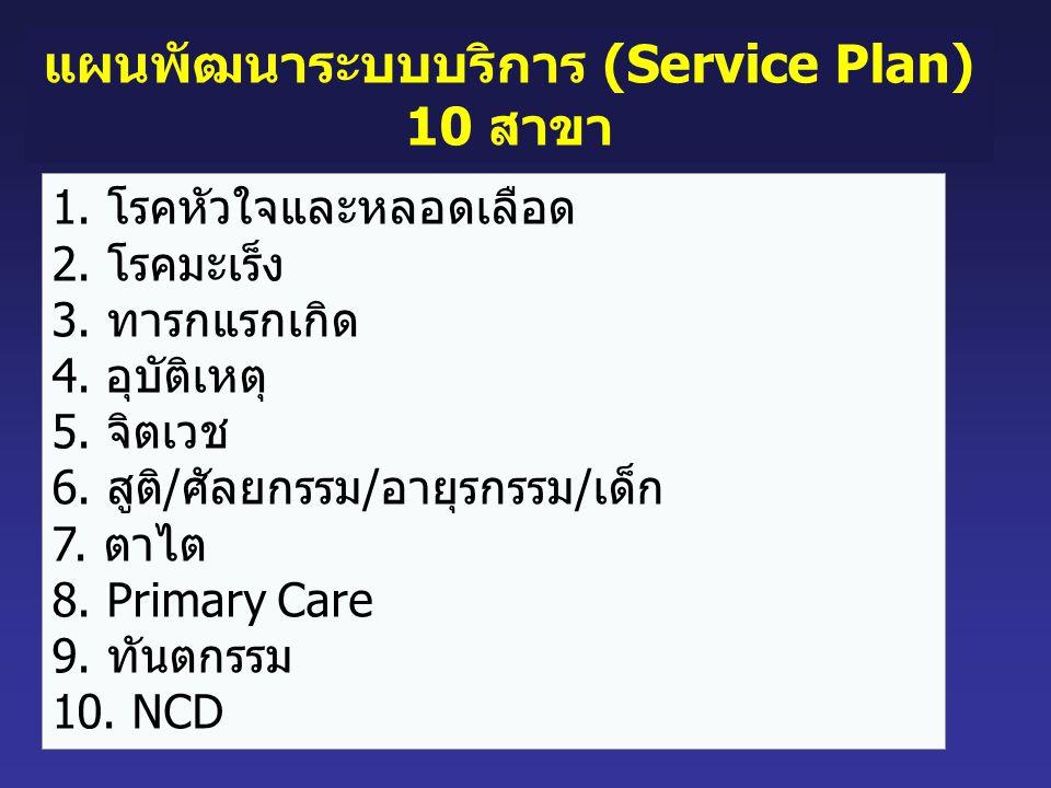 แผนพัฒนาระบบบริการ (Service Plan)