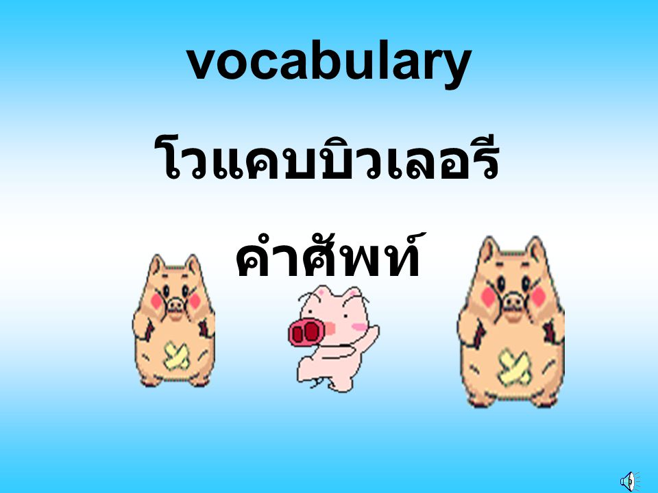vocabulary โวแคบบิวเลอรี คำศัพท์