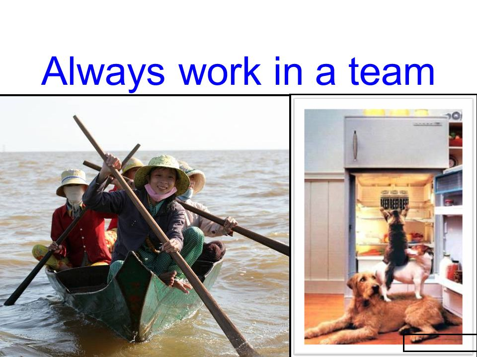 Always work in a team