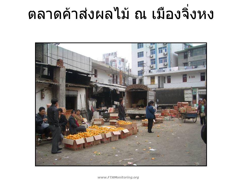 ตลาดค้าส่งผลไม้ ณ เมืองจิ่งหง