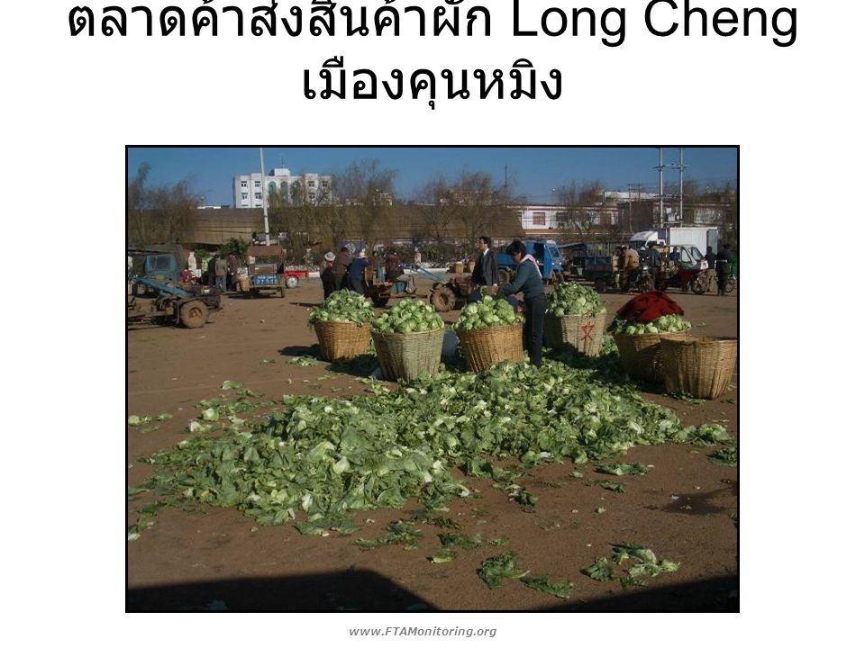 ตลาดค้าส่งสินค้าผัก Long Cheng เมืองคุนหมิง