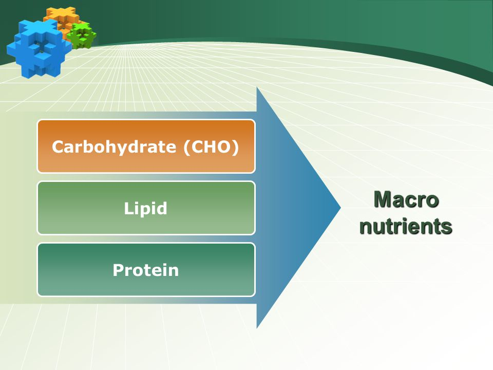 Carbohydrate (CHO) Macro nutrients Lipid Protein