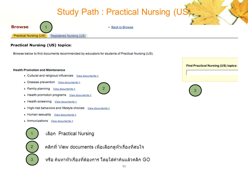 Study Path : Practical Nursing (US)