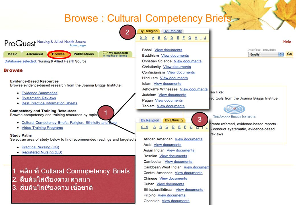 Browse : Cultural Competency Briefs