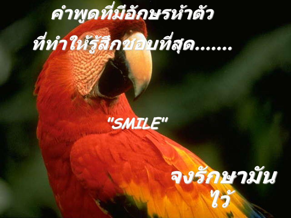 คำพูดที่มีอักษรห้าตัว ที่ทำให้รู้สึกชอบที่สุด.......