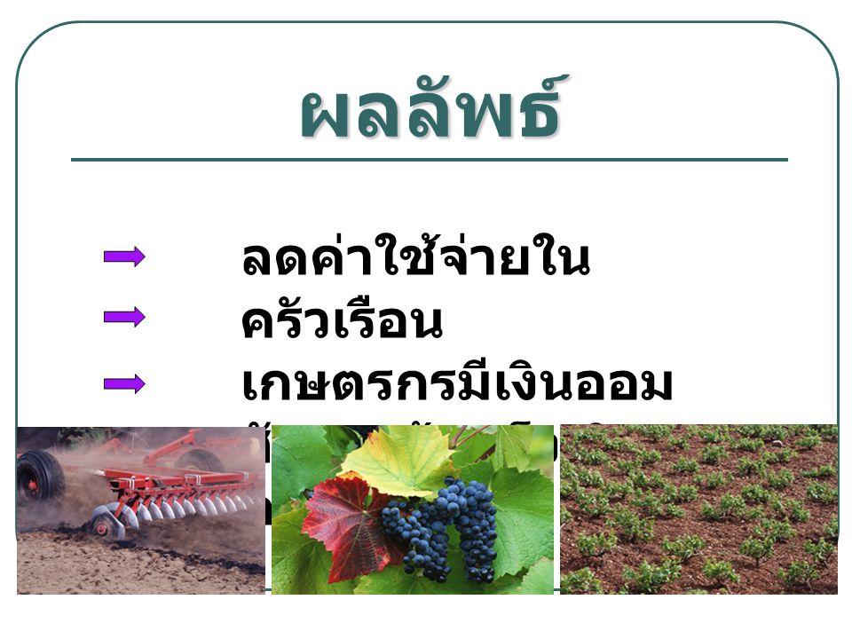 ผลลัพธ์ ลดค่าใช้จ่ายในครัวเรือน เกษตรกรมีเงินออม