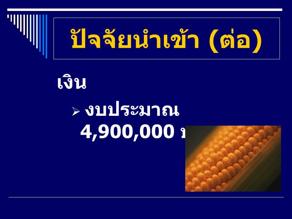 ปัจจัยนำเข้า (ต่อ) เงิน งบประมาณ 4,900,000 บาท