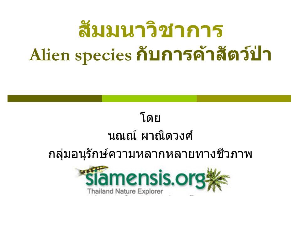 สัมมนาวิชาการ Alien species กับการค้าสัตว์ป่า