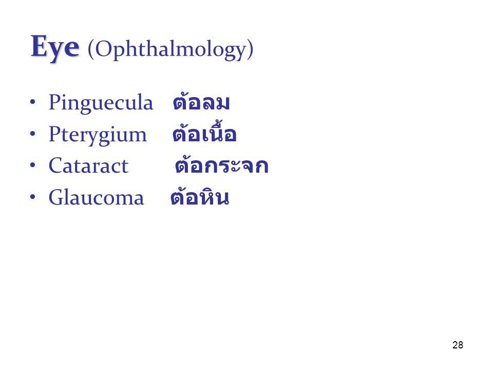 Eye (Ophthalmology) Pinguecula ต้อลม Pterygium ต้อเนื้อ