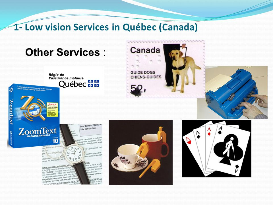 1- Low vision Services in Québec (Canada)