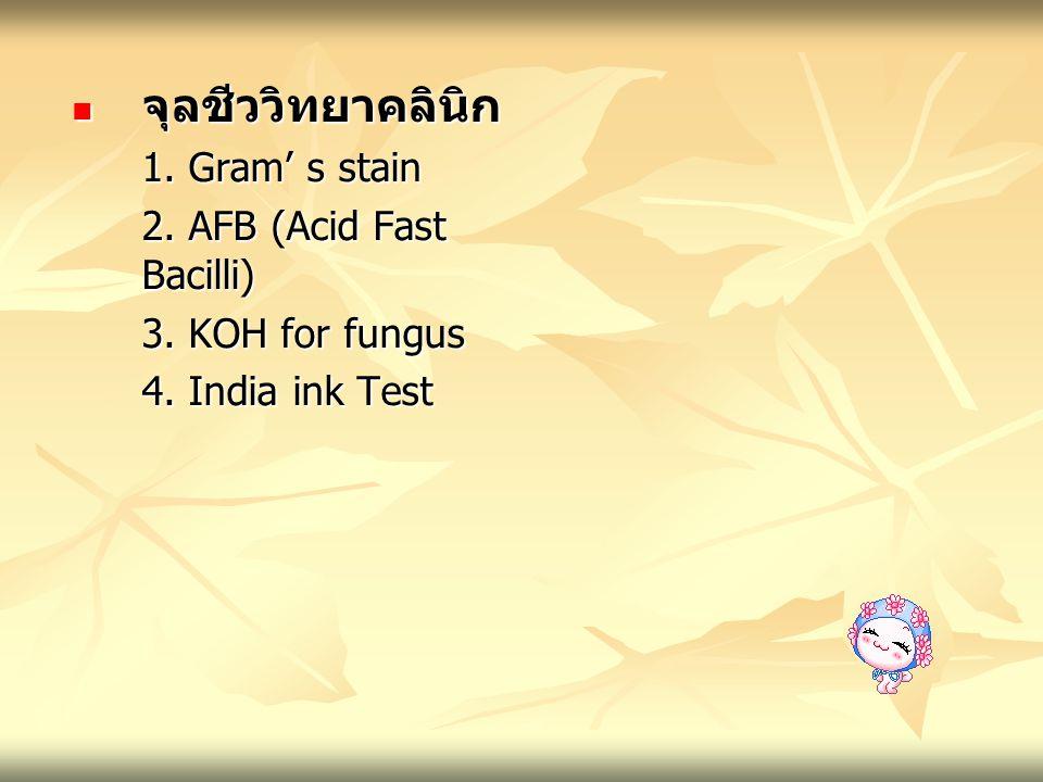 จุลชีววิทยาคลินิก 1. Gram' s stain 2. AFB (Acid Fast Bacilli)
