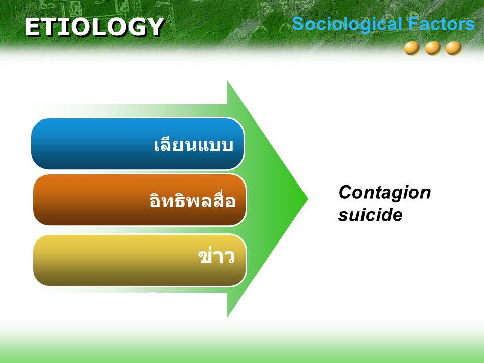 ETIOLOGY ข่าว Sociological Factors เลียนแบบ Contagion suicide