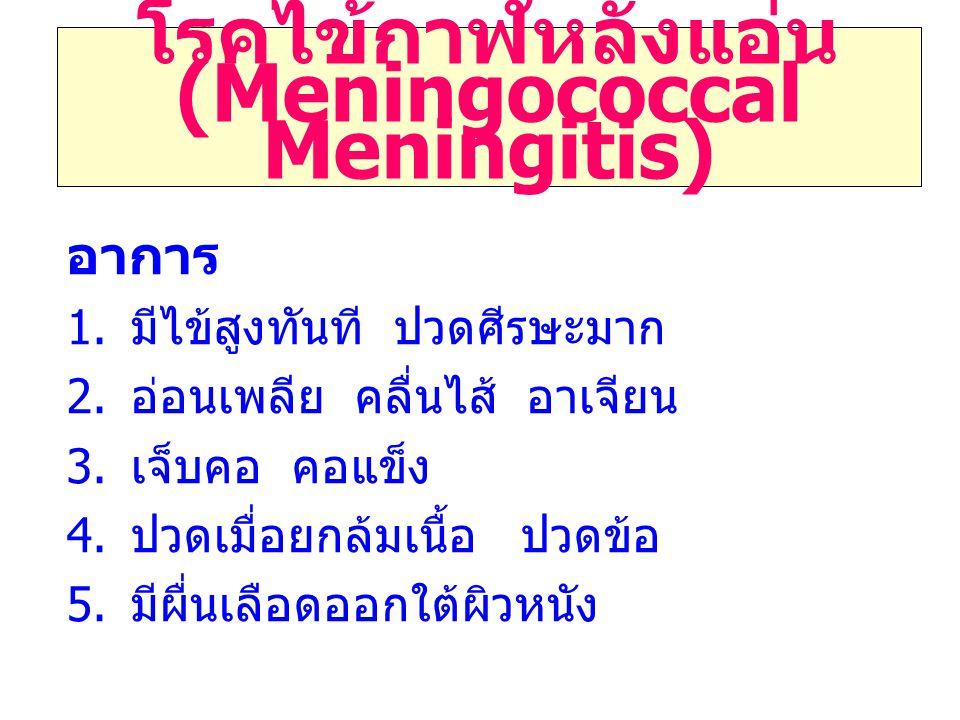 โรคไข้กาฬหลังแอ่น (Meningococcal Meningitis)