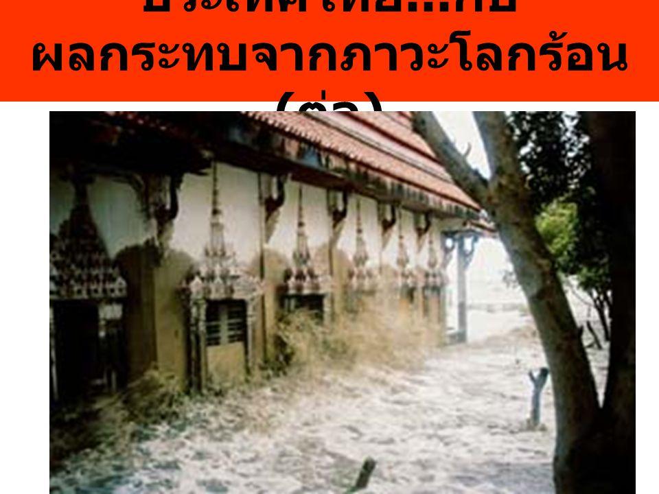 ประเทศไทย...กับ ผลกระทบจากภาวะโลกร้อน (ต่อ)