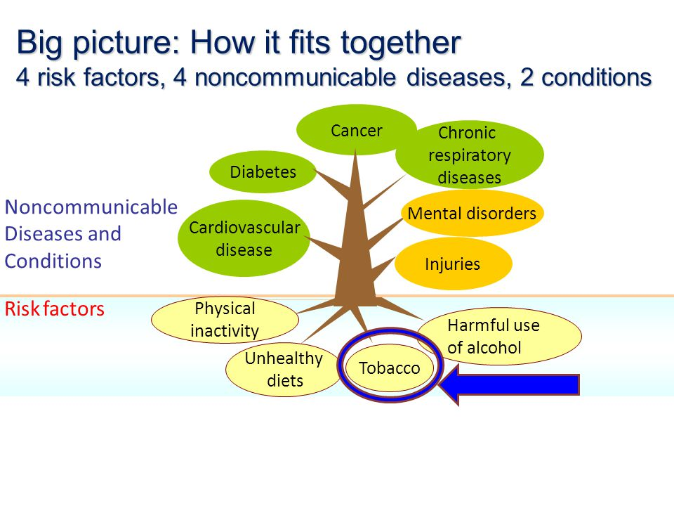 Big picture: How it fits together 4 risk factors, 4 noncommunicable diseases, 2 conditions