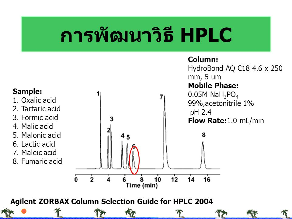 การพัฒนาวิธี HPLC Column: HydroBond AQ C18 4.6 x 250 mm, 5 um Mobile Phase: 0.05M NaH2PO4 99%,acetonitrile 1%