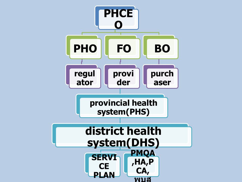 provincial health system(PHS) district health system(DHS)