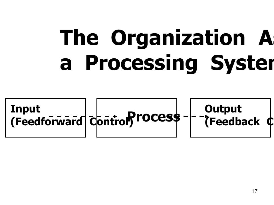 The Organization As a Processing System Process Input