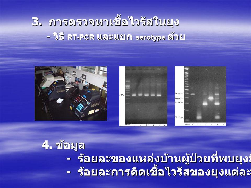 3. การตรวจหาเชื้อไวรัสในยุง