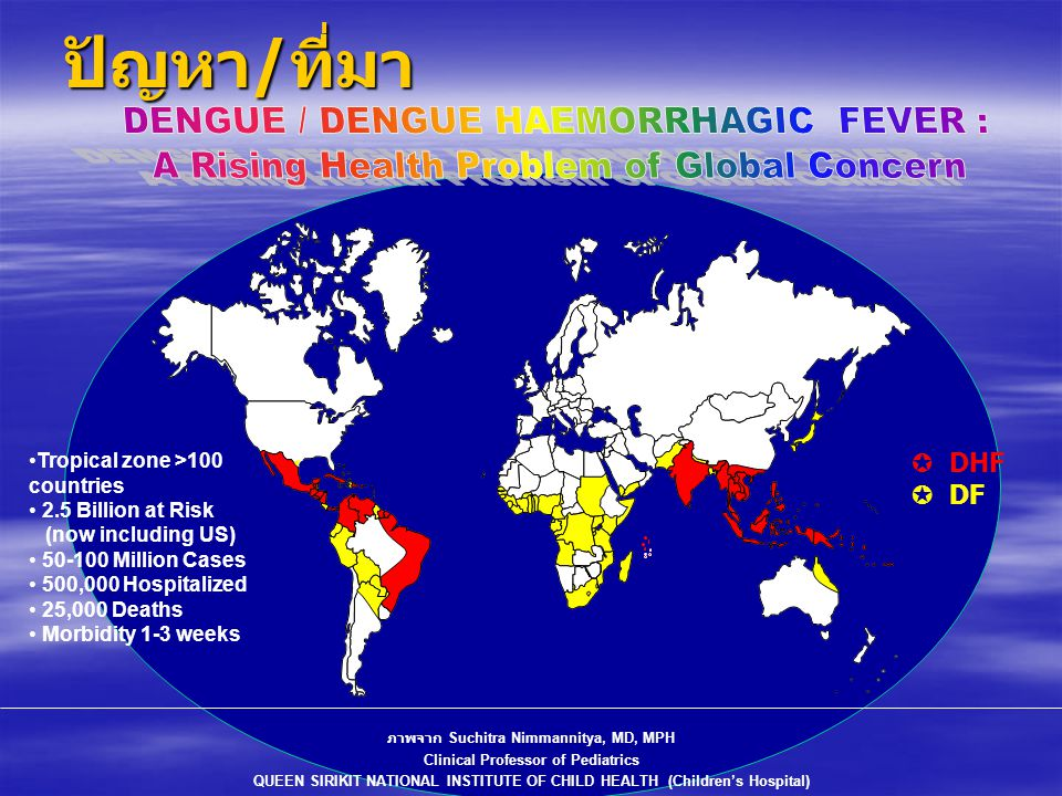 ปัญหา/ที่มา DENGUE / DENGUE HAEMORRHAGIC FEVER :