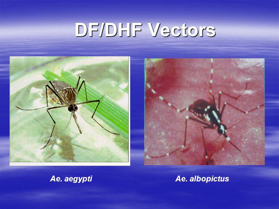 DF/DHF Vectors Ae. aegypti Ae. albopictus