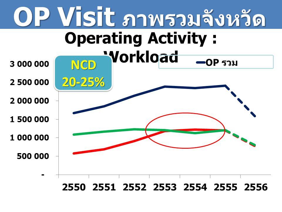 OP Visit ภาพรวมจังหวัด Operating Activity : Workload