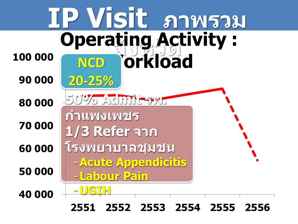 IP Visit ภาพรวมจังหวัด Operating Activity : Workload