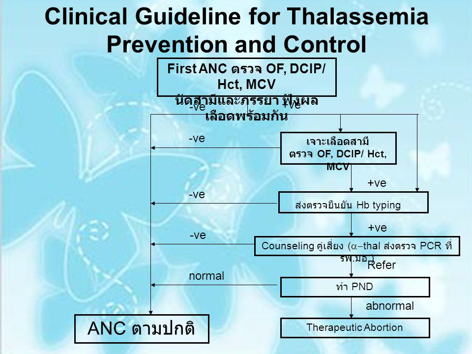 Clinical Guideline for Thalassemia Prevention and Control