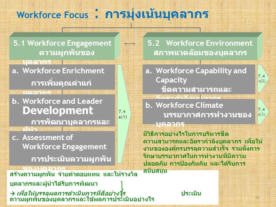 Workforce Focus : การมุ่งเน้นบุคลากร
