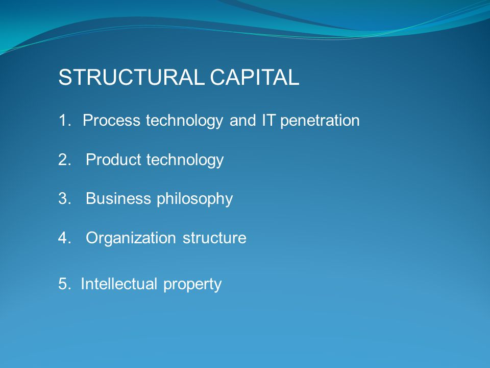 STRUCTURAL CAPITAL Process technology and IT penetration