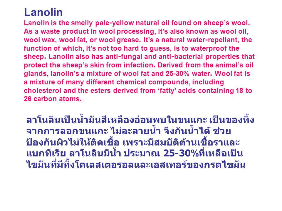 Lanolin Lanolin is the smelly pale-yellow natural oil found on sheep's wool. As a waste product in wool processing, it's also known as wool oil, wool wax, wool fat, or wool grease. It's a natural water-repellant, the function of which, it's not too hard to guess, is to waterproof the sheep. Lanolin also has anti-fungal and anti-bacterial properties that protect the sheep's skin from infection. Derived from the animal's oil glands, lanolin's a mixture of wool fat and 25-30% water. Wool fat is a mixture of many different chemical compounds, including cholesterol and the esters derived from 'fatty' acids containing 18 to 26 carbon atoms.