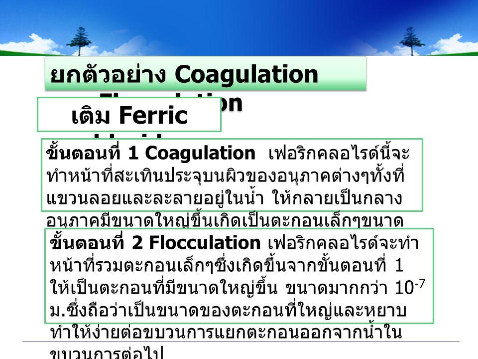 ยกตัวอย่าง Coagulation และ Flocculation