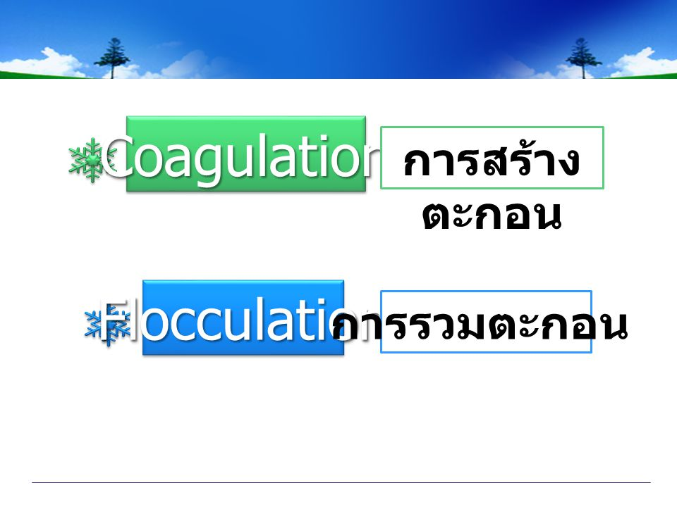 Coagulation การสร้างตะกอน Flocculation การรวมตะกอน