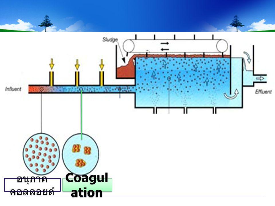 อนุภาคคอลลอยด์ Coagulation