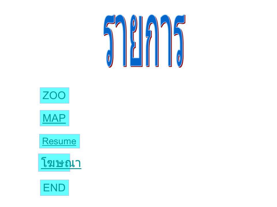 รายการ ZOO MAP Resume โฆษณา END