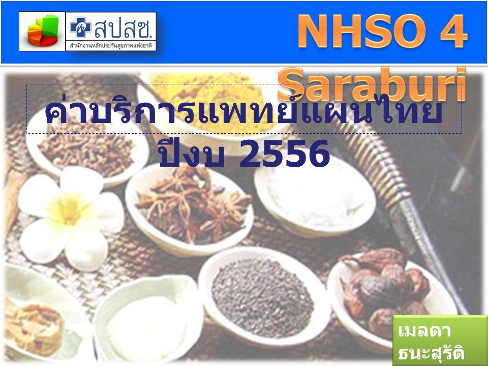 ค่าบริการแพทย์แผนไทยปีงบ 2556