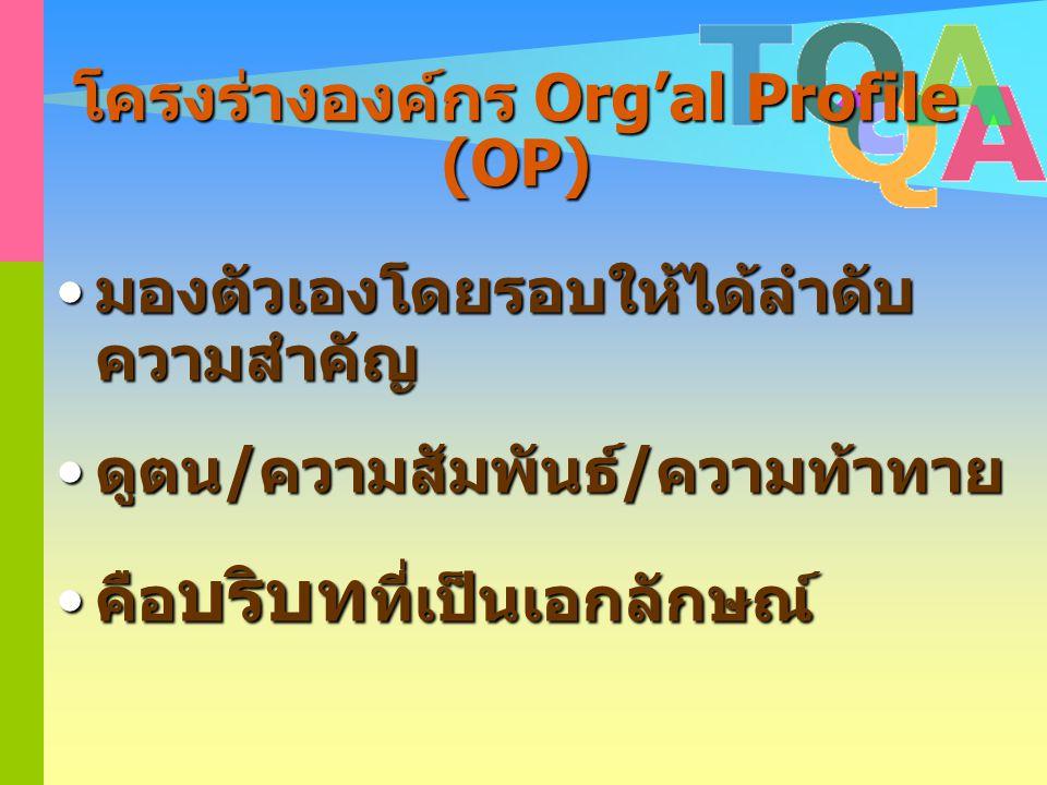 โครงร่างองค์กร Org'al Profile (OP)