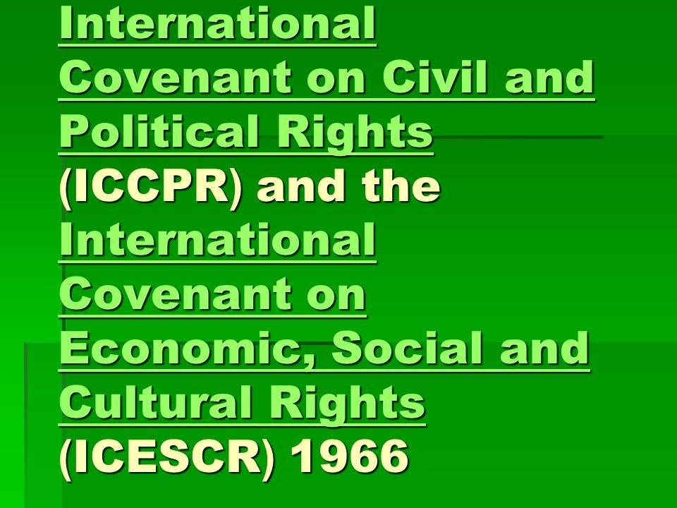 International Covenant on Civil and Political Rights (ICCPR) and the International Covenant on Economic, Social and Cultural Rights (ICESCR) 1966