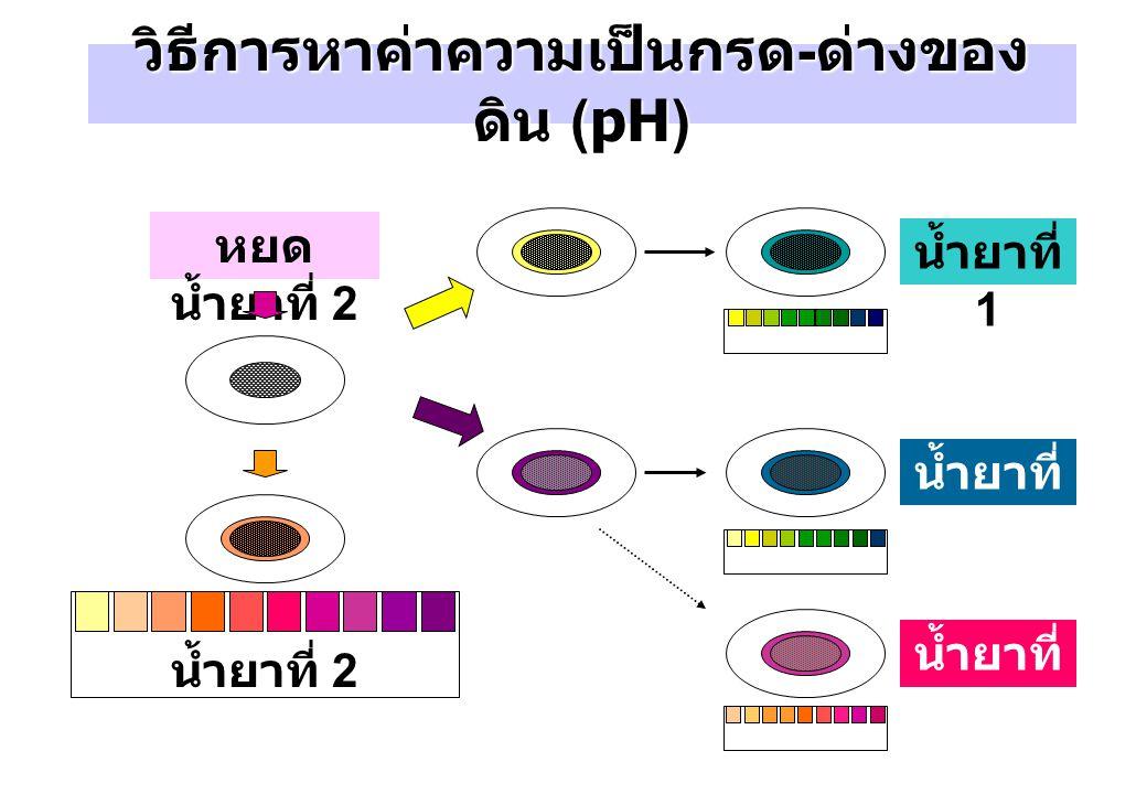 วิธีการหาค่าความเป็นกรด-ด่างของดิน (pH)