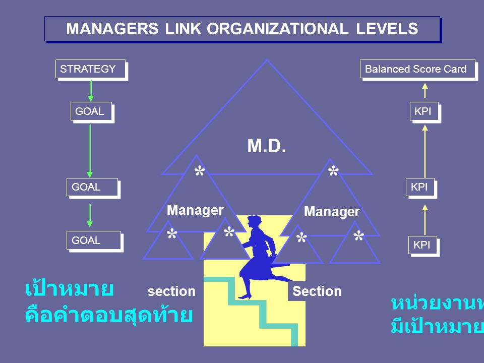MANAGERS LINK ORGANIZATIONAL LEVELS