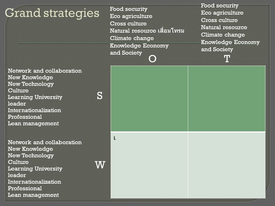 Grand strategies O T S W เ Food security Food security Eco agriculture