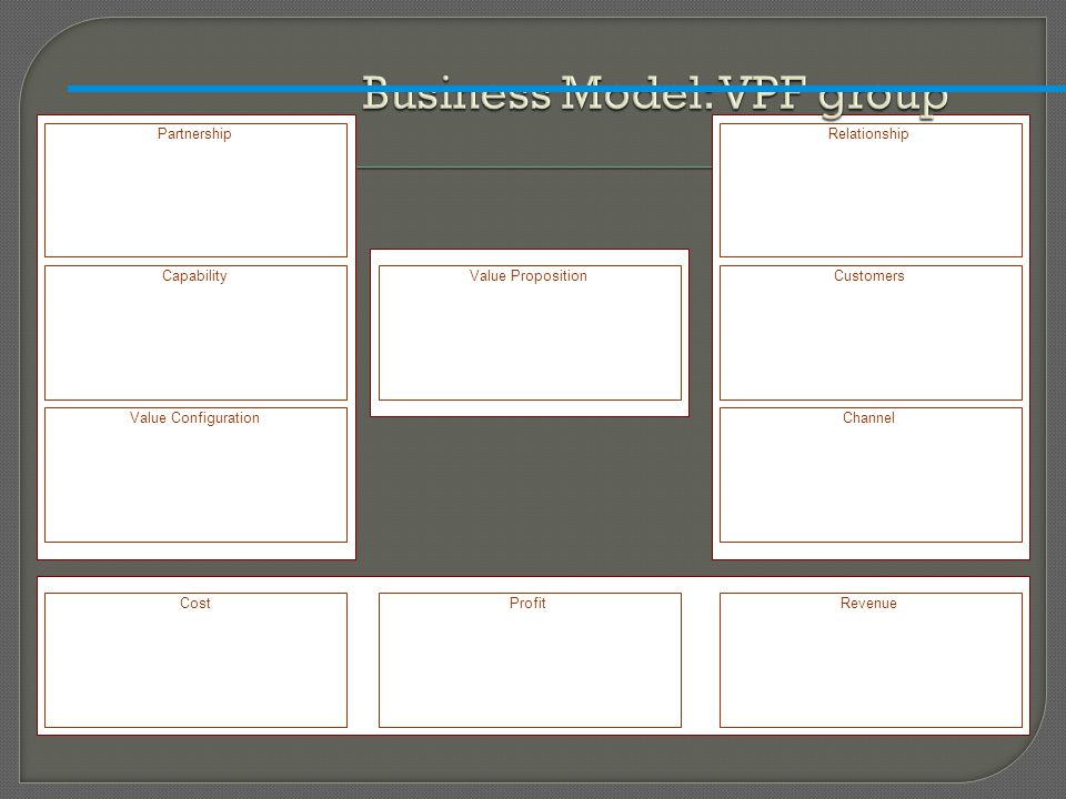 Business Model: VPF group