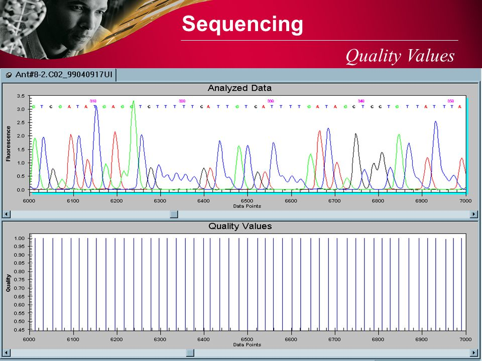 Sequencing Quality Values