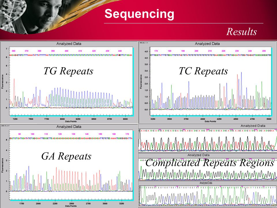 Sequencing Results TG Repeats TC Repeats GA Repeats